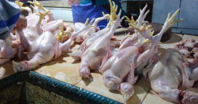 Harga Daging Ayam Meroket, ini Kata Kepolisian..